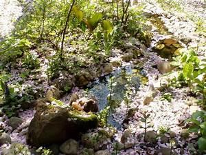Kleiner Bachlauf Garten : kleiner bachlauf im garten hat jemand tips mein ~ Michelbontemps.com Haus und Dekorationen