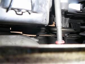 Embrayage Qui Couine : vw combi t3 1 6td an 1991 moteur golf 1 dpose courroie alterna ~ Maxctalentgroup.com Avis de Voitures