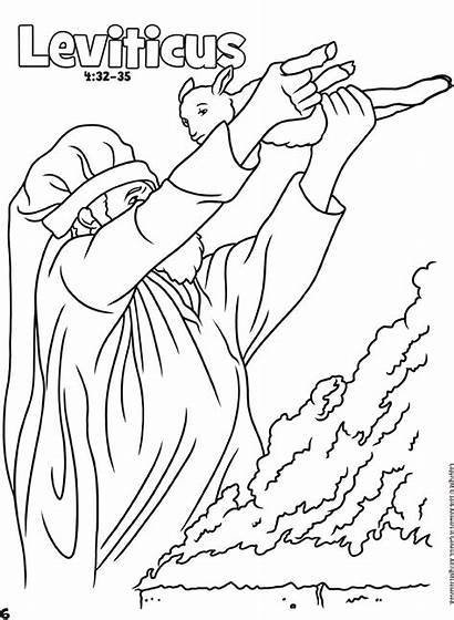 Bible Coloring Genesis Books Answers Activity Sheets