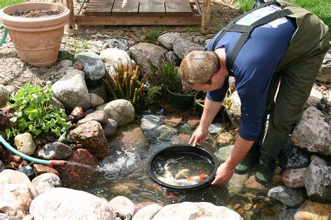 Clean Backyard Pond by How To Clean A Koi Pond Aquareale Pond