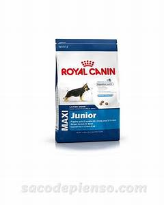 Royal Canin Maxi Junior : royal canin maxi junior para perros saco de pienso ~ Buech-reservation.com Haus und Dekorationen