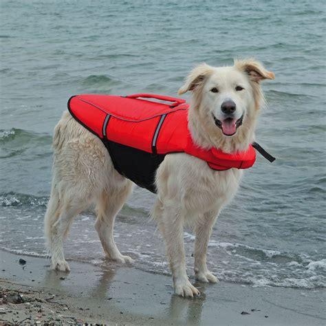 rettungsweste hund preisvergleich die besten angebote