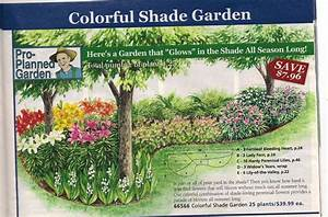 Shade Garden Plan From Michigan Bulb Co   North Garden
