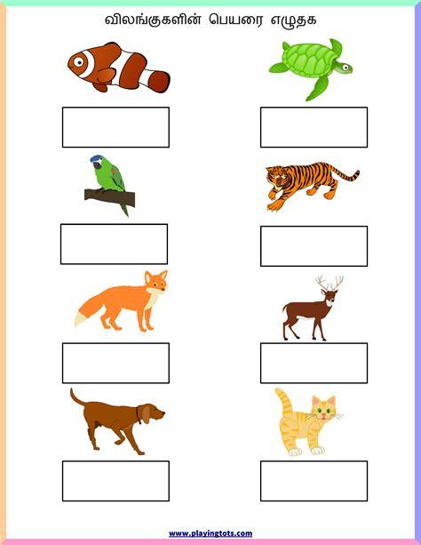 worksheet tamil animals keywords free printable pdf