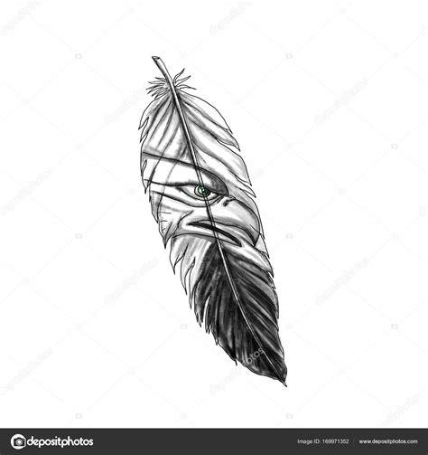 sea eagle feather tattoo stock photo  patrimonio