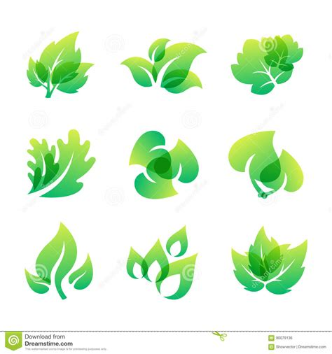 environment friendly design green leaf eco design friendly nature elegance symbol and natural element ecology organic vector
