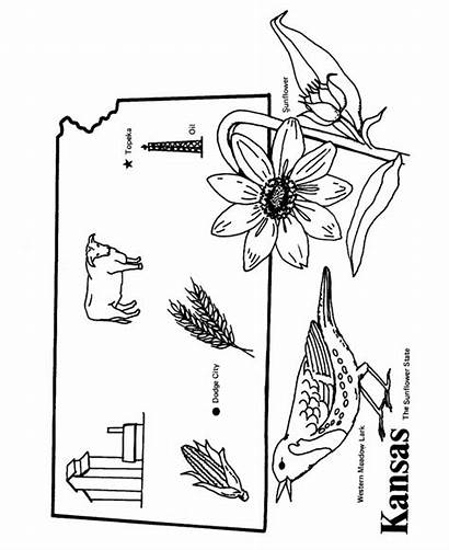 Kansas Coloring Map State Pages Outline Printables