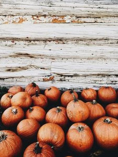Aesthetic Thanksgiving Wallpaper by 90 Smart Creative Thanksgiving Aesthetic Ideas
