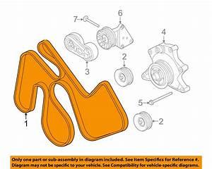New Drive Belt W Dual Hd Alternators 6 7l T C Diesel F 250