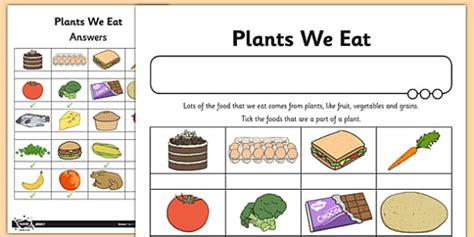 worksheet activity sheet plants we eat activity sheet