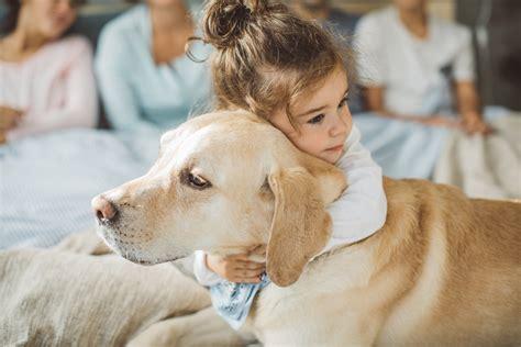Haustiere Fuer Kinder by Haustiere F 252 R Kinder 6 Gute Gr 252 Nde F 252 R Das Haustier