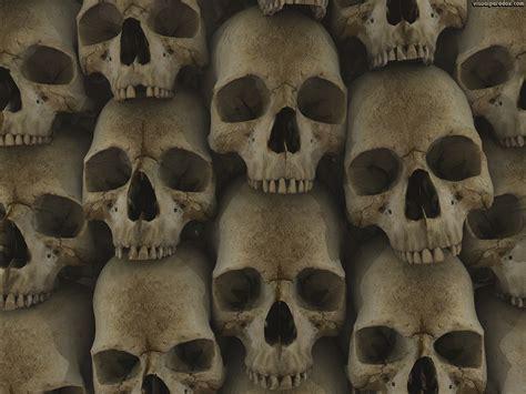 wallpaper skull wall