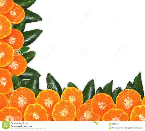 Orange Fruit Leaves Texture Isolated White