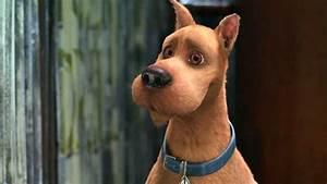 Scooby-Doo 2 Movie Pictures!