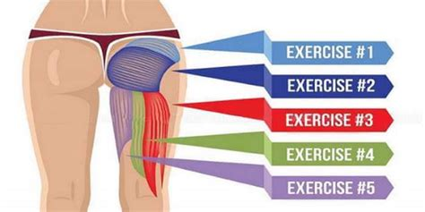 5 Effective Glute Exercises That Will Improve Posture