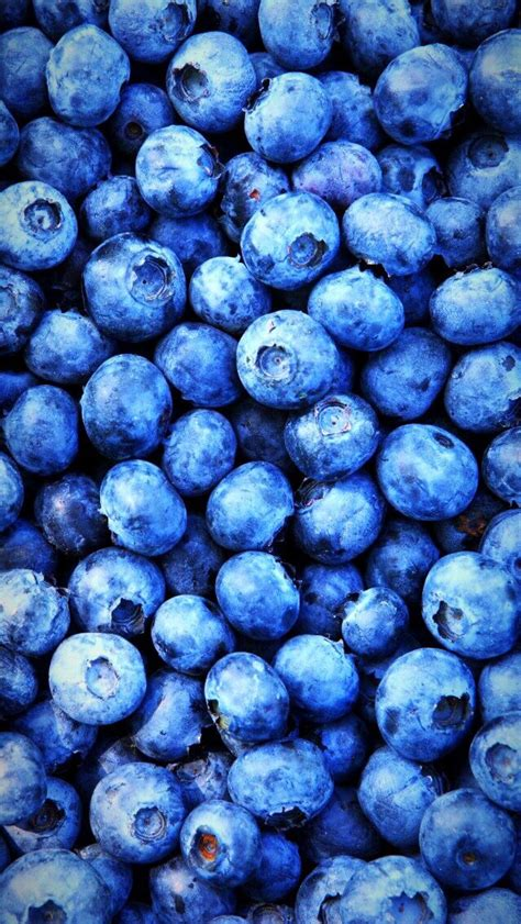 Blueberries Tumblr Fruits Eserlerim Pinterest HD Wallpapers Download Free Images Wallpaper [1000image.com]