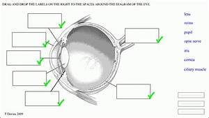 Structure Of The Eye Diagram