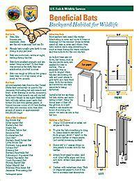 medium  chamber bat box plan  picture bat house