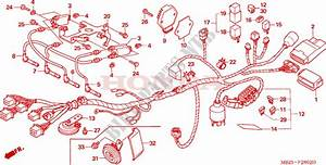Wire Harness  Cb600f3  4  5  6  For Honda Cb 600 F Hornet