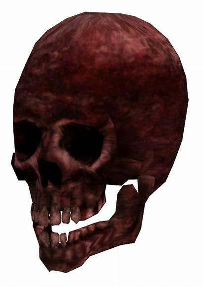 Mutilated Fallout Limb Skull Gamepedia