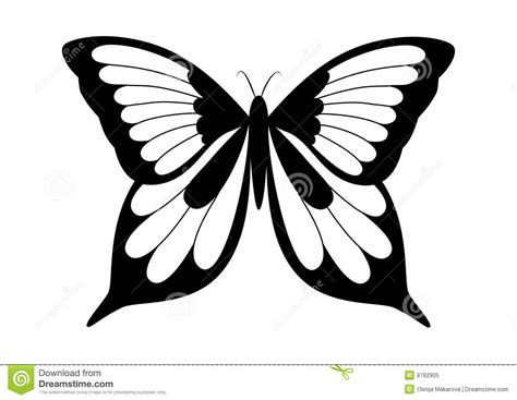 Cool Car Wallpapers For Desktop 3d Butterflies Craft by Black And White Images Of Butterflies 19 Background