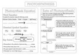 gcse photosynthesis topic worksheets by beckystoke teaching resources tes