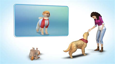 sims  cats dogs pc review stg