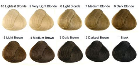 hair color levels understanding hair color levels studio