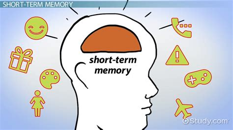 Atkinson & Shiffrin's Modal Model Of Memory