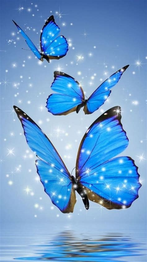 Download hd blue wallpapers best collection. Blue Butterfly Wallpaper For Phone | 2021 Cute Wallpapers