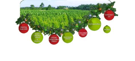 awesome picture of christmas tree farm prices fabulous