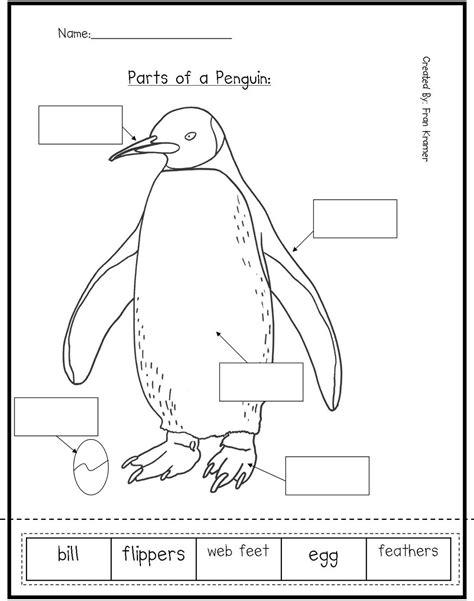 kindergarten crayons parts   bird great