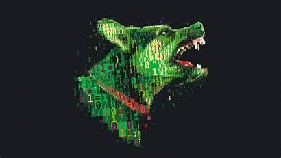 4k Digital Dog Background Skull Simple Numbers