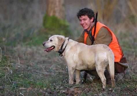 chasser en f 233 d 233 ration nationale des chasseurs de