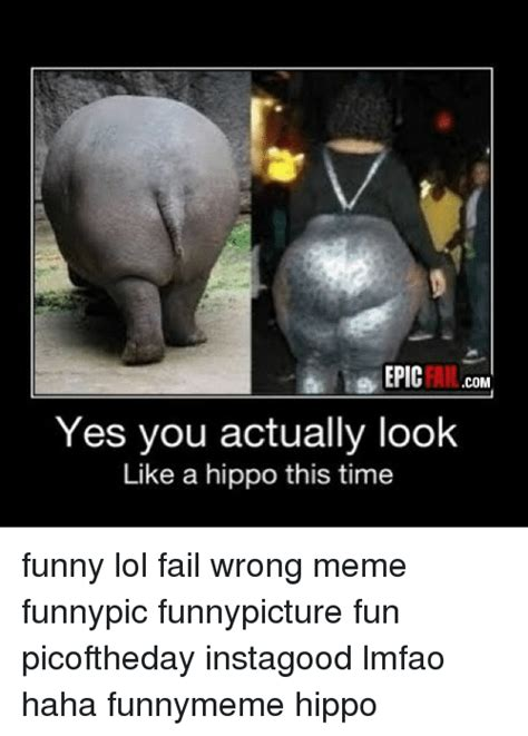 Funny Fail Memes - epic fail com yes you actually look like a hippo this time funny lol fail wrong meme funnypic