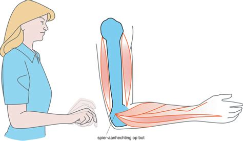 spieren meten