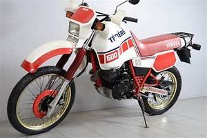 Yamaha Xt 600 Occasion : yamaha 600 xt t n r 3 yamaha xt 600 yamaha t n r pinterest yamaha and mopeds ~ Medecine-chirurgie-esthetiques.com Avis de Voitures