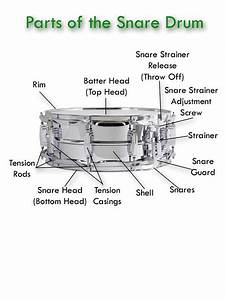 19 Best Music  Percussion Instruments Images On Pinterest