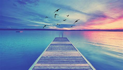 Background Images Of Pictures by Background Dock Birds Home Slider2 Discover Healing