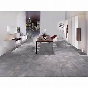 Hauteur Plinthe Carrelage : plinthe carrelage nice cenere crz64 8x60 carrelage ~ Farleysfitness.com Idées de Décoration