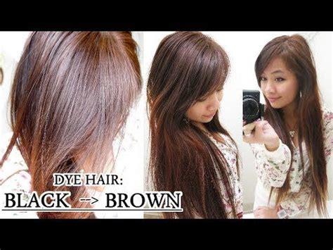 dye hair  black  brown  bleach
