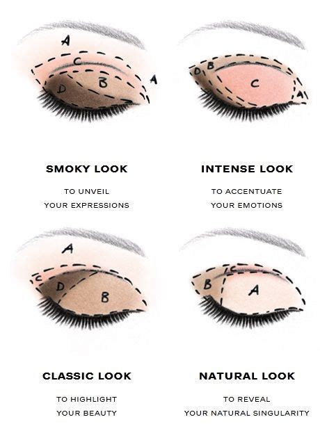 Handy Infographic Which Shows You Were Apply Eyeshadow