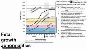 Fetal Growth Abnormalities
