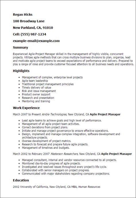 marketing resume executive summary exle free resume