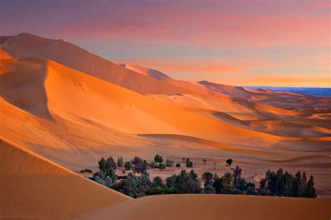 10 Interesting Facts About The Sahara Desert On The Go