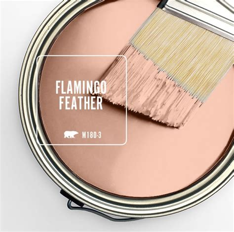 behr color   month flamingo feather   grove