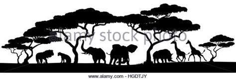 african landscape animal silhouette savanna stock