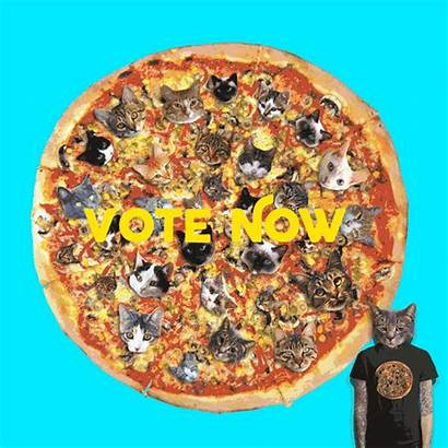 Pizza Cat Pimp Giphy Gifs Blawg Subs