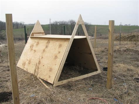 quick goat shelter  winter   farm pinterest