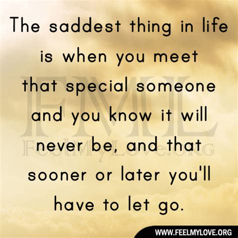 Quotes Meeting Someone Special After Long Time